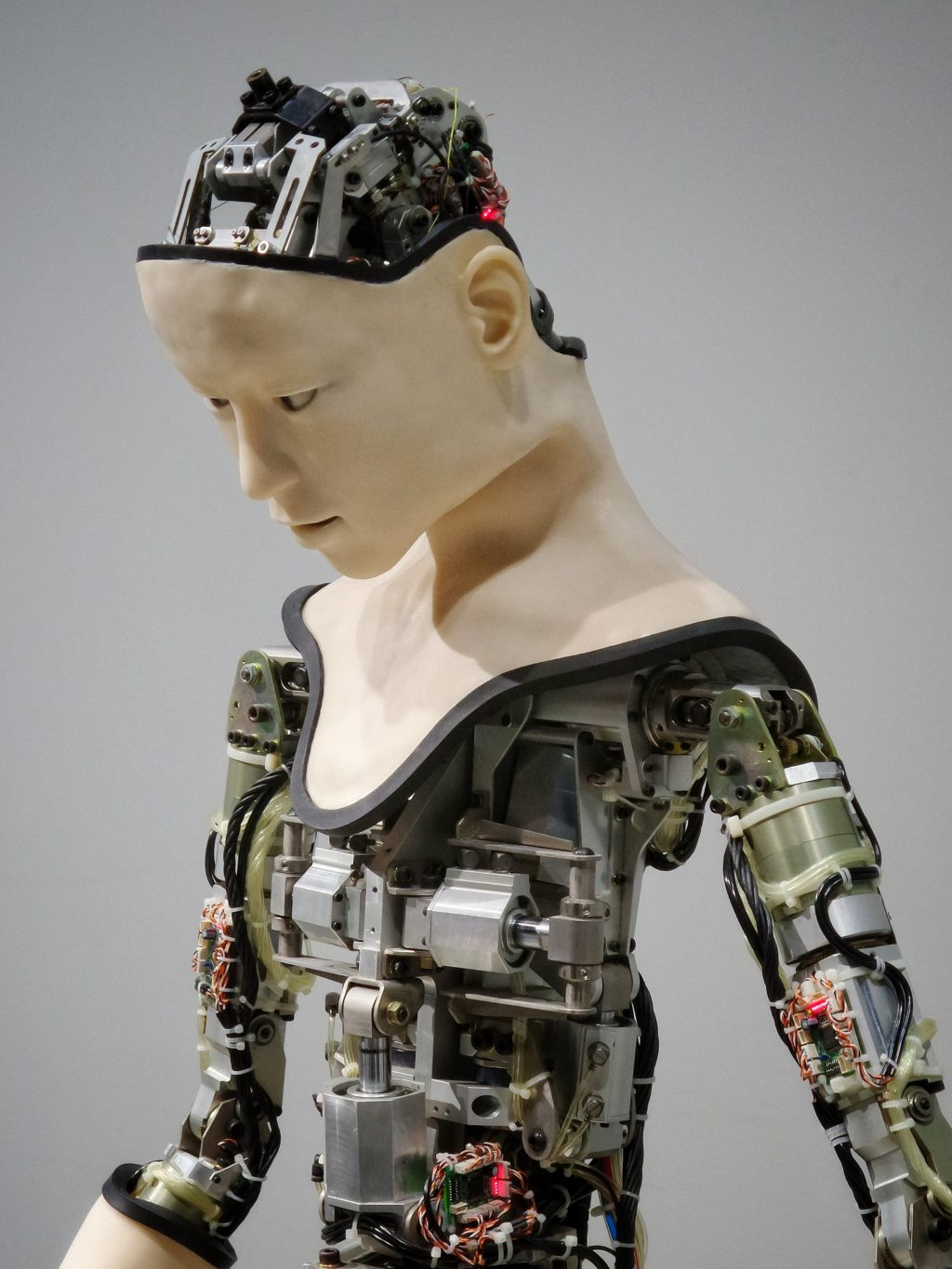 how to hold your own in the rise of artificial intelligence